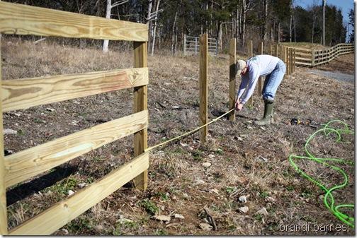 fencing02_blog