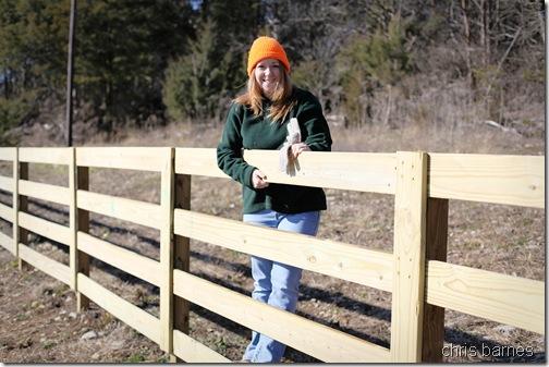 fencing01_smaller