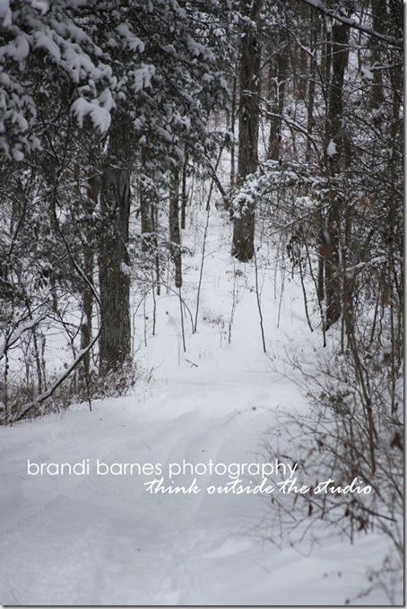 2011-01-10_003_web