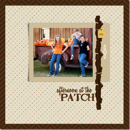 Afternoon at the patch_web